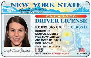 美国驾照sample